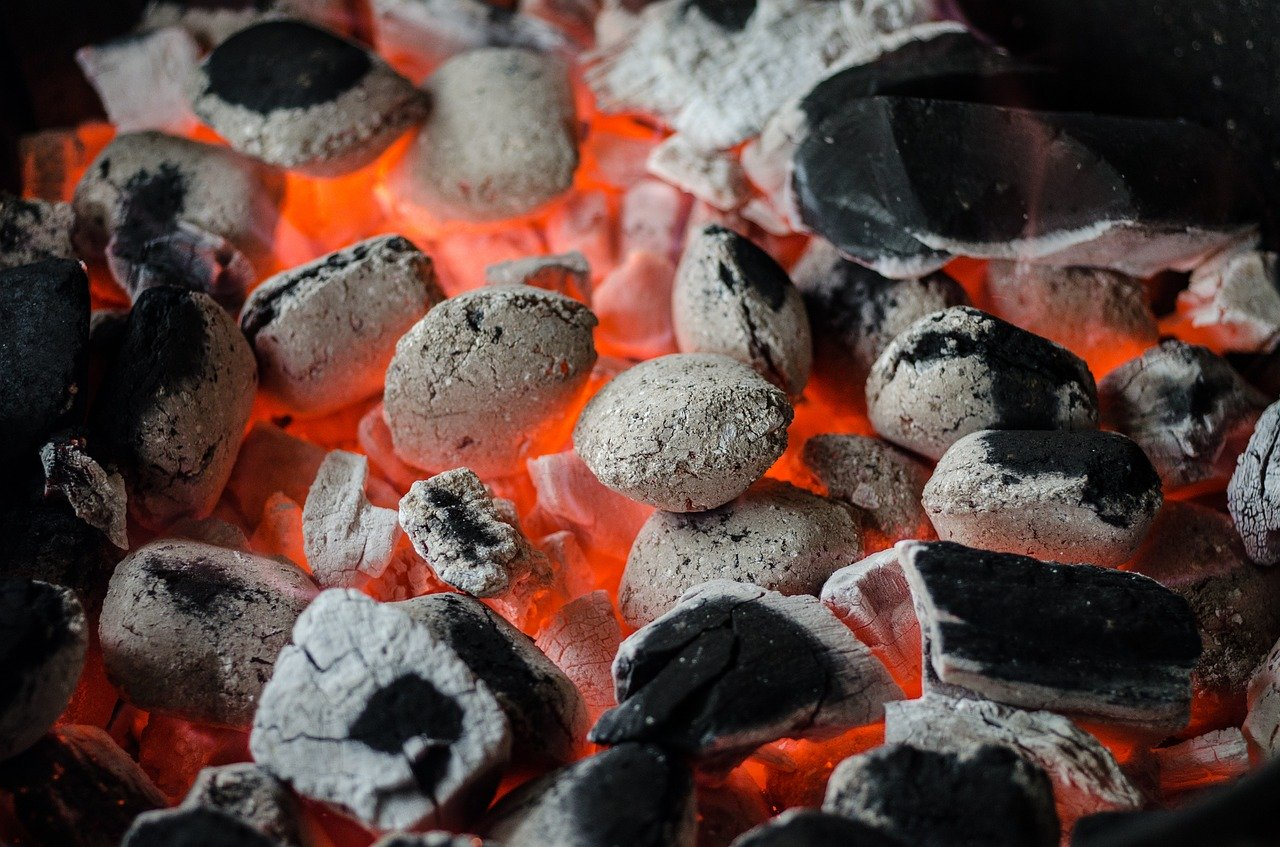 Cuisson Du Bar Au Barbecue Weber : Comparatif
